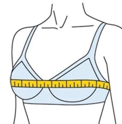 измерить обхват груди