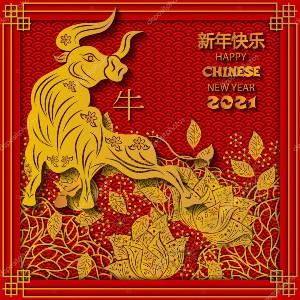 Китайский новый год на алиэкспресс в 2021