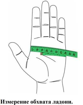 как измерить ладонь